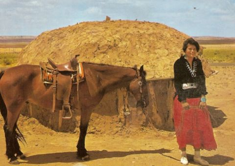 Navajo woman with horse